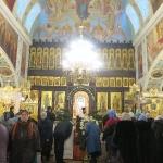 georgiy_hozevit_20-01-2016-212